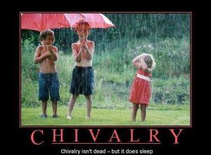 chivalry-rain_use