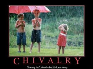 chivalry-rain_use